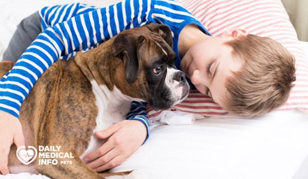طباع كلب البوكسر مع الاطفال